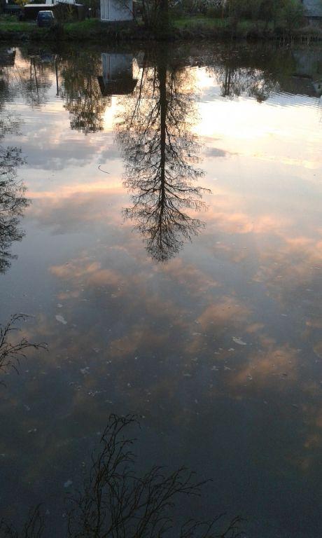 Foto z obce